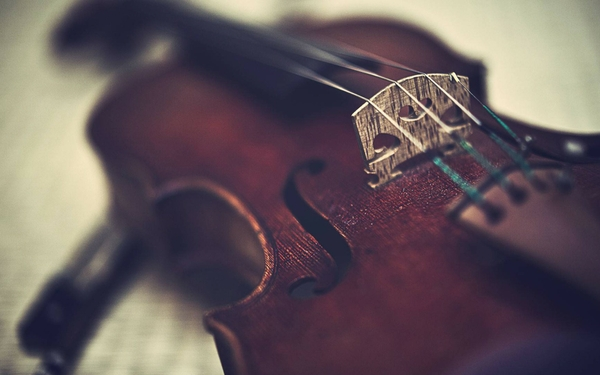 music violins classical_wallpaperswa.com_28